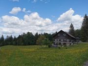 Berghütte Alm Ferienhaus in Österreich