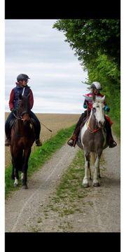 Verschenken Zeit mit unseren Pferden