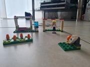 Lego Friends Karate und Fussball