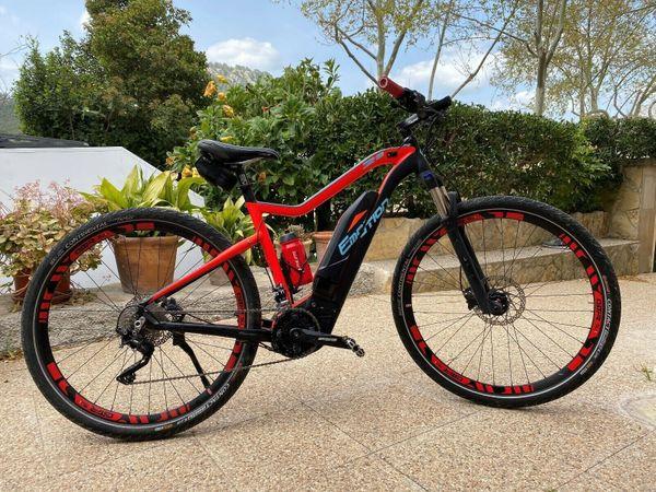 Rebel E-Bike 29 Größe S