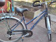 Damen Fahrrad von Bellini