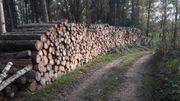 Brennholz Scheitholz Holz