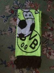BVB Schal zu verkaufen