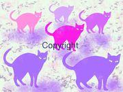 Bild Motiv Cats Digitale Kunst