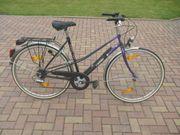 Damenrad 28 7 Gang Kettenschaltung