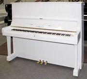 Klavier Yamaha U3 weiß poliert