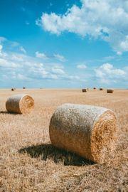 Suche Wiesen Äcker Felder zum