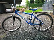 Trekking Fahrrad Wheeler 26