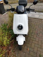 Niu N1S Elektro Motorroller 2019