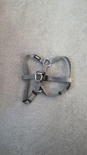 AniOne Hundegeschirr Größe XS- ca