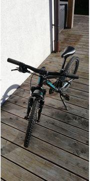 Kinder Mountainbike ORBEA MX20 20