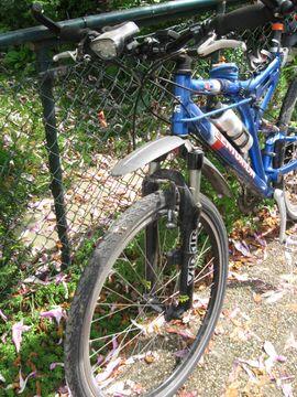 Mountain-Bikes, BMX-Räder, Rennräder - MTB Fahrrad Centurion CC1000 Herrenrad