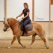 Horsemanship und klassische Reitlehre