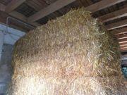 Stroh Einstreu Weizenstroh Haferstroh ohne