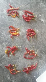 Getrocknete Chilischoten