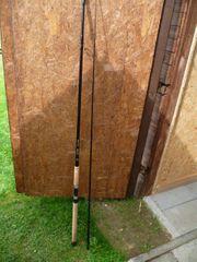 Steckrute von Black Wood Neuwertig