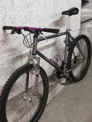 WHEELER PRO LINE 3080 Fahrrad