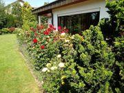 Gartenpflege- Grünanlagenpflege- Damit auch ihr