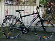 Herren - Fahrrad von TRIUMPH 21