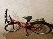 26er Damenmountainbike 18gang