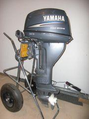 YAMAHA AE L 15 PS