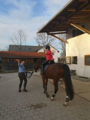 Spielerisch reiten lernen