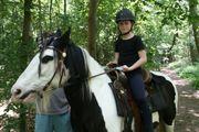 Ponyreiten und Ausritte