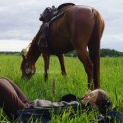 Wanderritt Wanderreiten Wandern zu Pferd