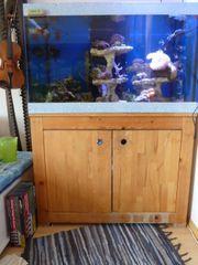 Aquarium 100x60x60 360 Liter Unterschrank