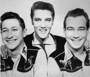 Elvis Coverband im Aufbau sucht