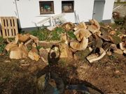 Berennholz für Kaminofen
