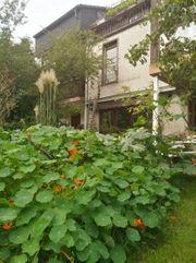 Große gemütlich möblierte Räume Garten