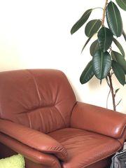 ECHT-Leder Sofa und Sessel