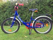 Kinder-Fahrrad Delphin