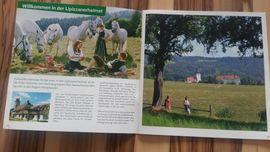 Ferienimmobilien Österreich - Ferienwohnung Südwest Steiermark