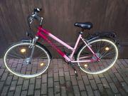 Pegasus Damen Fahrrad 28 Zoll