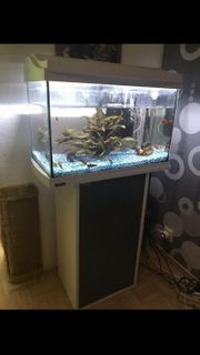 Aquarium 60l Tetra starter Set
