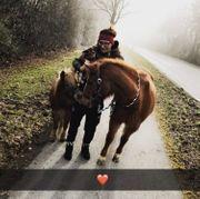 Pflegebeteiligung für Ponys