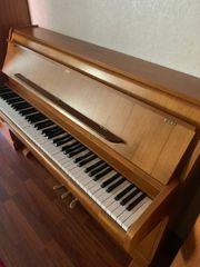 Klavier von Schimmel aus Nussbaum