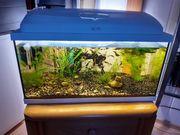 Aquarium von AQUAEL 54 Liter
