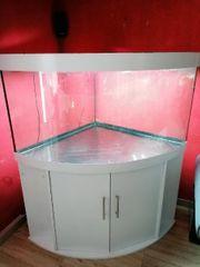 Juwel Trigon 350 Eckaquarium Meerwasser
