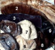 Pelz Konvolut von verschiedenen alten