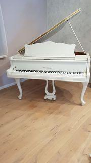 Flügel Klavier von Zeitter und