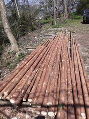 Holzstangen Latten