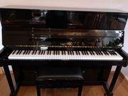 Piano Hoffmann H-117 World