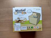 Spardose Katze in der Box