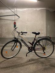1x Fahrrad 60