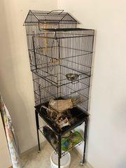 Vogelvoliere Käfig