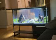 Aquarium OptiWhite HighEnd Design