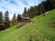 Hütte im Zillertal max 7